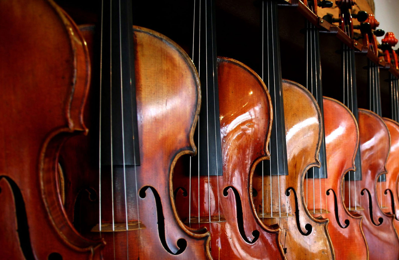 15 things you didn't know about the violin