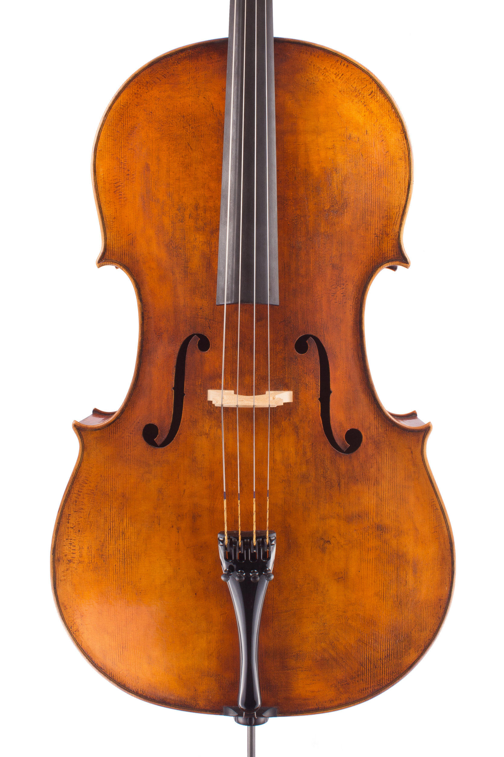 Cello by Luiz Amorim, Goffriller model 2016