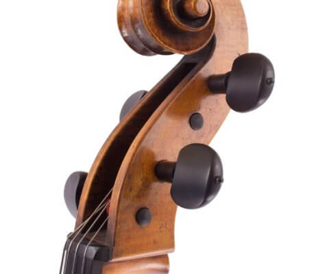 cello-luiz-amorim-rogeri-head-3