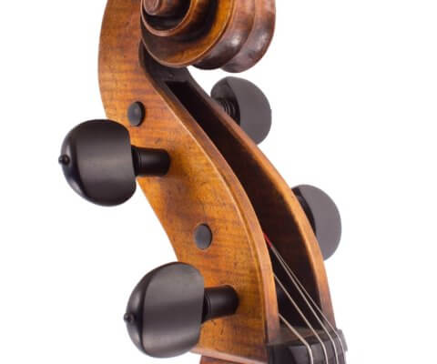 cello-luiz-amorim-rogeri-head-5