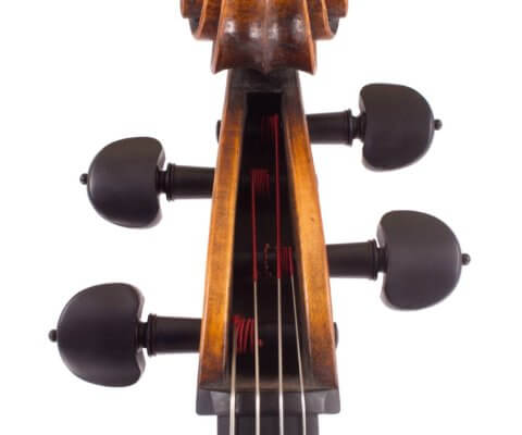 cello-luiz-amorim-rogeri-head-7