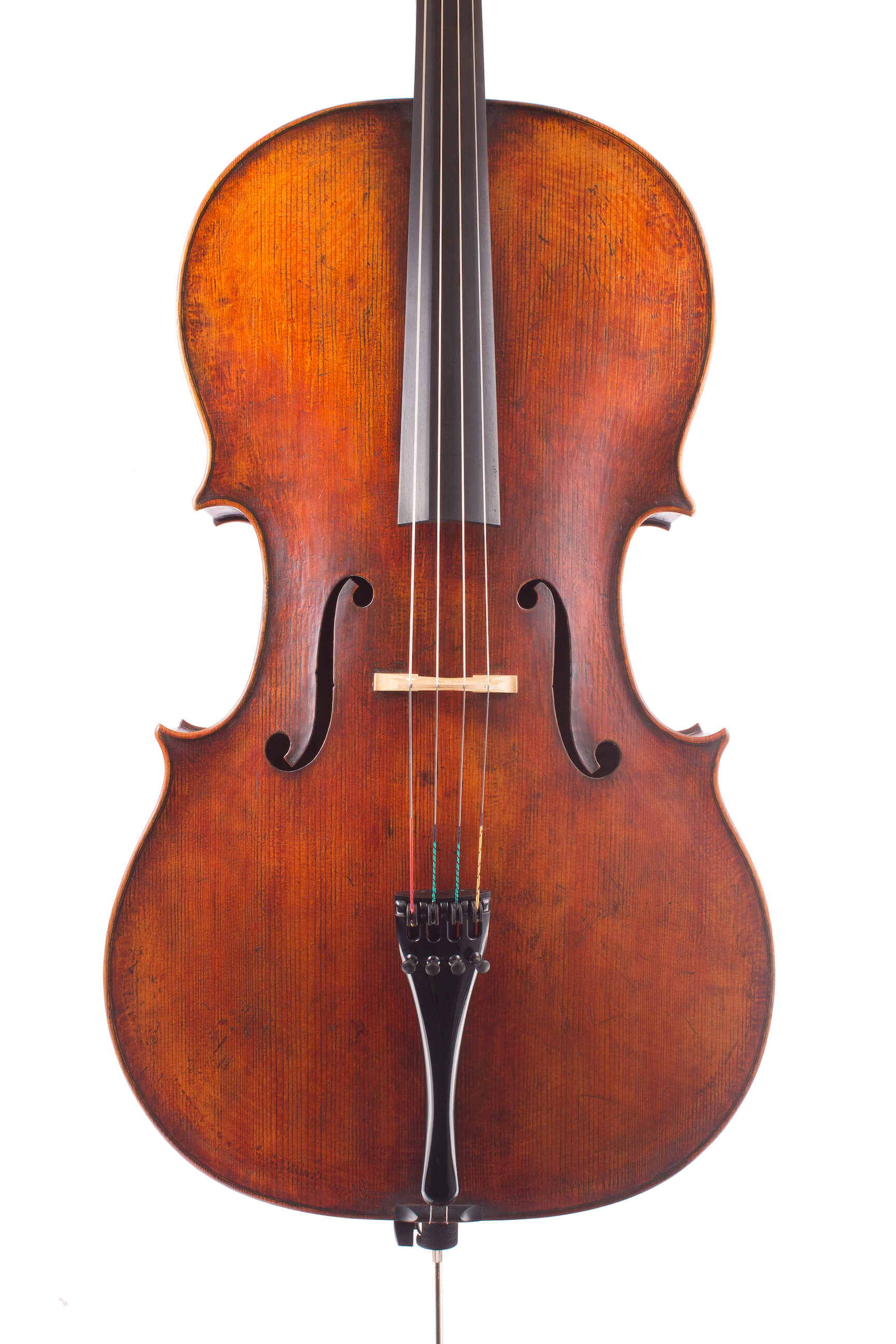 Cello by Luiz Amorim, Goffriller model, 2017