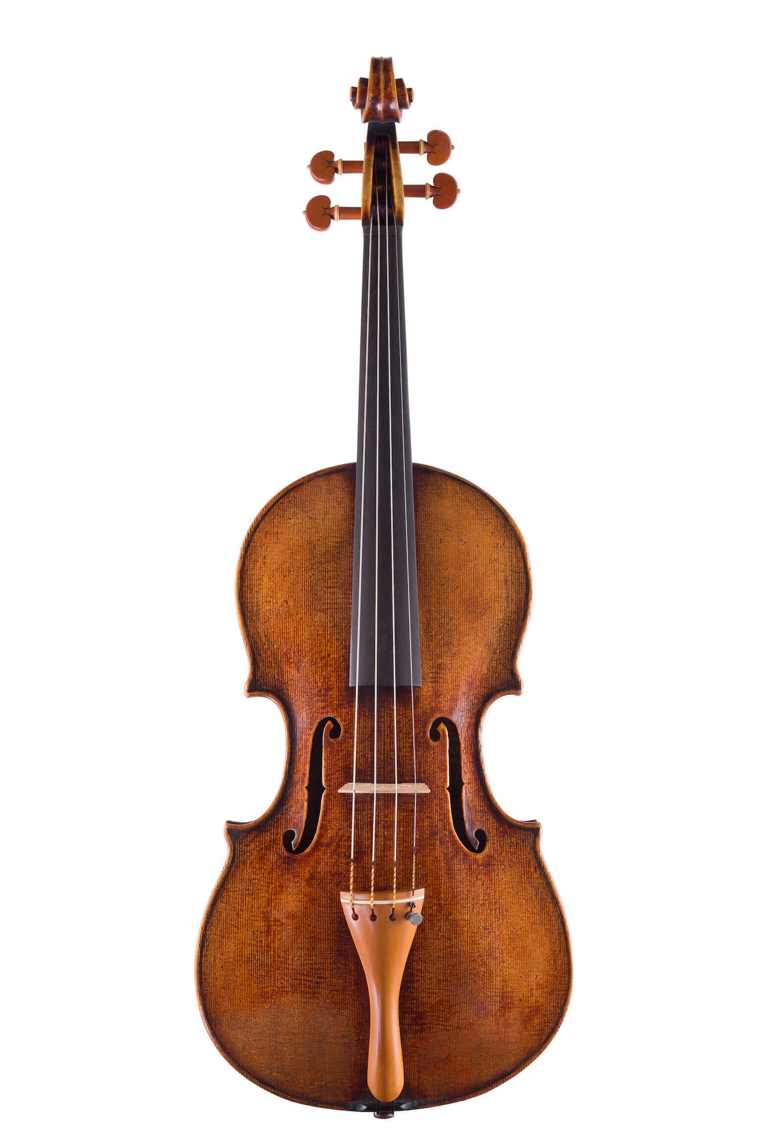 Viola by Luiz Amorim, Maggini model, 2017